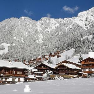 1-Alpbachtal-Wildschoenau-Resort-1