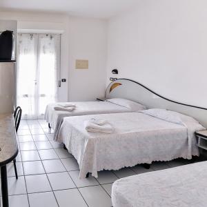 HOTEL RONDINELLA - CESENATICO (6)